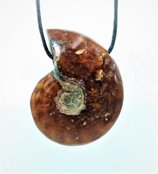 Ammonit Anhänger gebohrt N°379